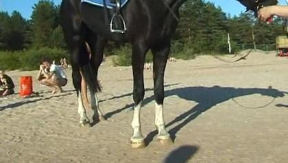 Reiten nackt pferd Reiten, Pferde,